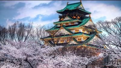 Học tiếng Nhật theo giáo trình Minna no Nihongo (Bài 11 - 15)